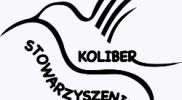Koliber_PNG_250x250_szare_tlo
